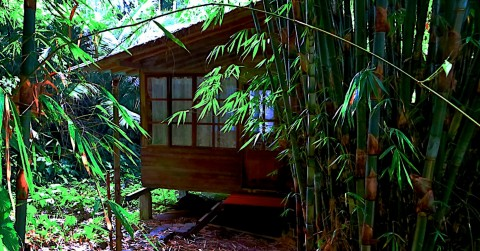 Bungalow for 2people